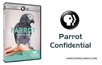 Parrot Confidential Cover دانلود مستند زندگی خصوصی طوطی ها   Parrot Confidential 2013