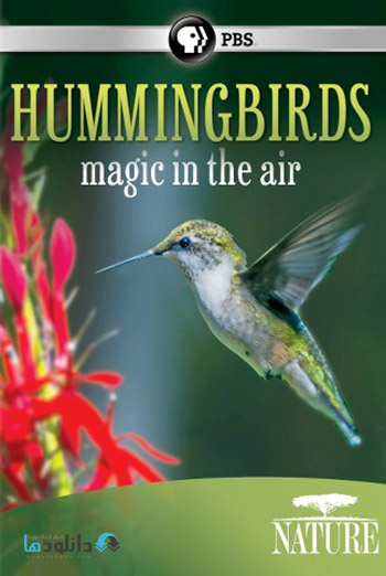 Hummingbirds Magic in the Air 2015 cover دانلود مستند Hummingbirds Magic in the Air 2015