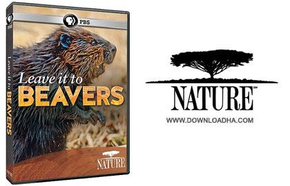Leave it to Beavers cover دانلود مستند زندگی سگ آبی   Leave it to Beavers 2014
