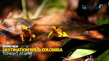 Destination Wild Colombia 2015 cover small دانلود فصل اول مستند حیات وحش کلمبیا   Destination Wild Colombia 2015