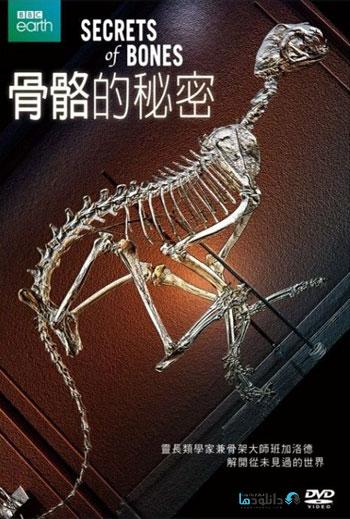 Secrets Of Bones 2014 Cover Small دانلود فصل اول مستند اسرار استخوان 2014 Secrets Of Bones