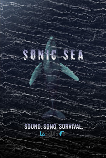 Sonic-Sea-2016-Cover