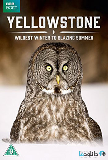 Yellowstone-Wildest-Winter-To-Blazing-Summer-2017-Cover